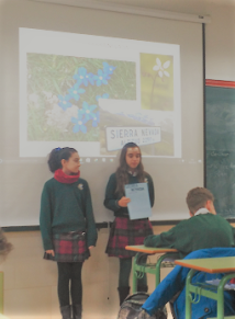 Los alumnos exponen ante sus compañeros el reultado de su investigación